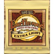 Ernie Ball 2006 - Earthwood Extra Light