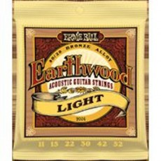 Ernie Ball 2004 - Earthwood Light