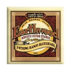 Ernie Ball 2061-Earthwood 5-String Banjo Frailing