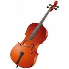 Violoncelli / Contrabbassi